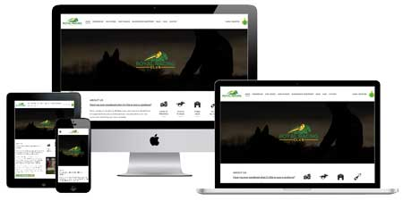 Website design Ireland. Horse Syndicate Website